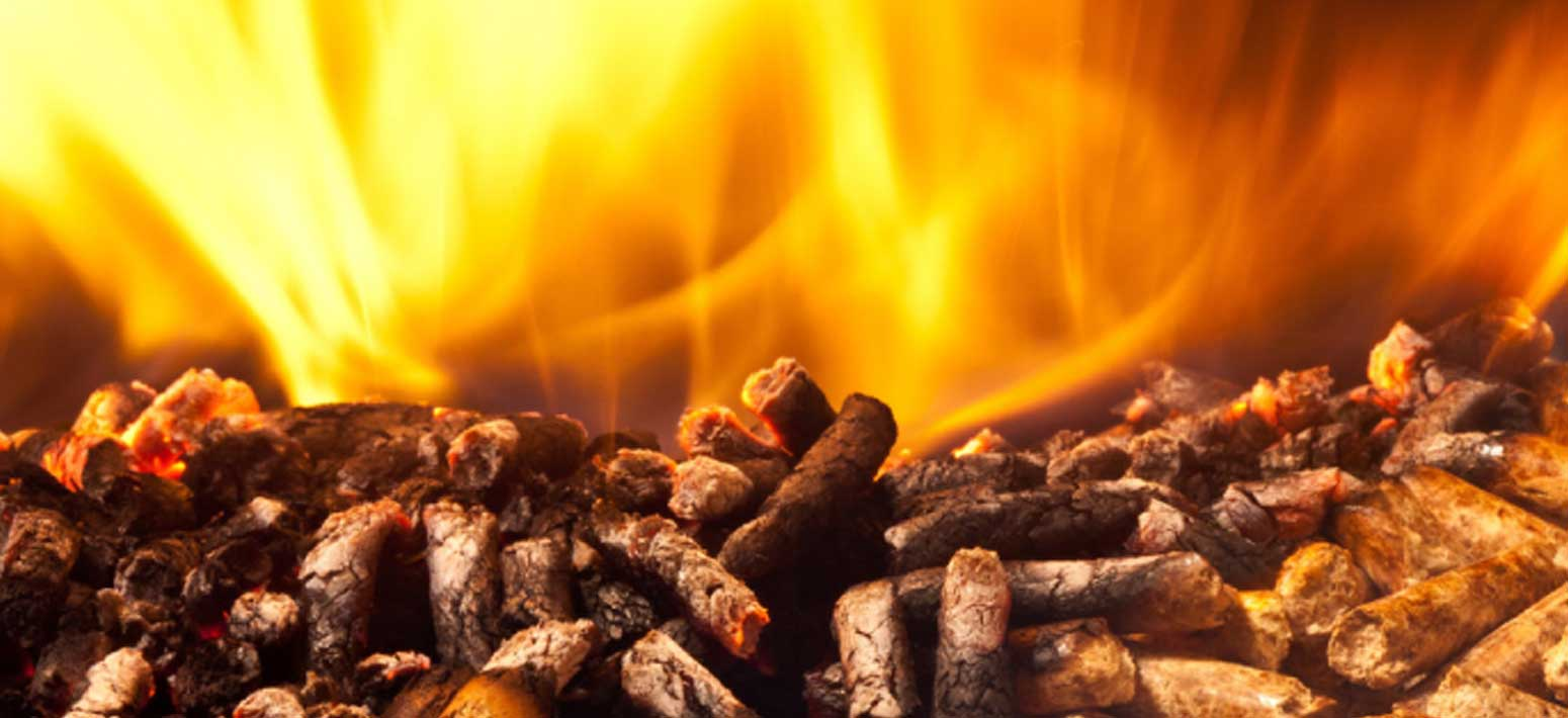 Renewable Energy | Wood Burning Stoves | Outdoor Living | Morso Products